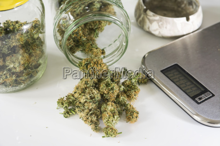 studio marijuana drugs with digital scale