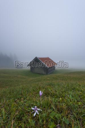 germany bavaria werdenfelser land hay barn
