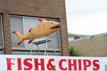 australia victoria lakes entrance fish and