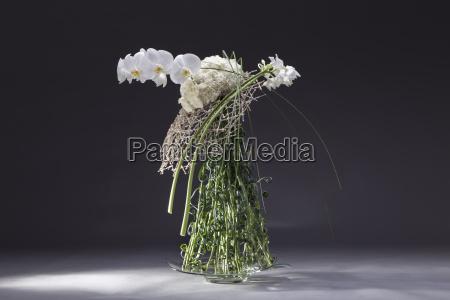 floral arrangement of poaceae dianthus eucharis