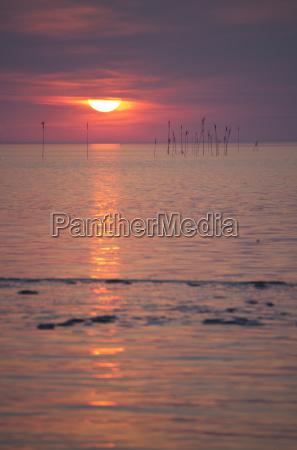 germany lower saxony dorum sunset at