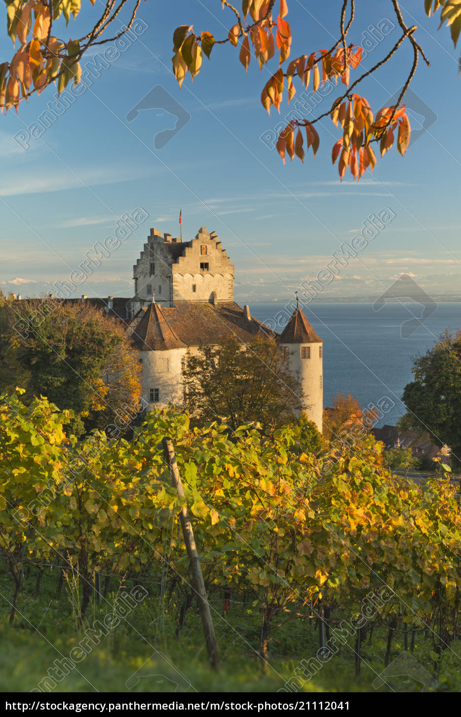 germany, , view, of, vineyards, next, to - 21112041