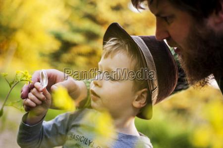 portrait of little boy exploring nature