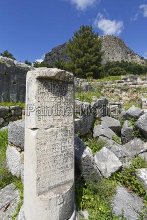 paseo viaje arbol piedra nube griego