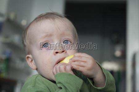 portrait of little boy eating apple