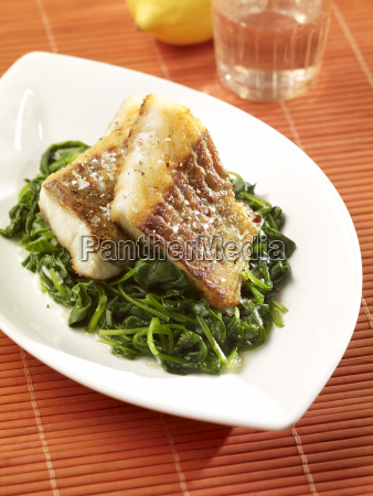 pescado pesca placa fotografia foto vegetal