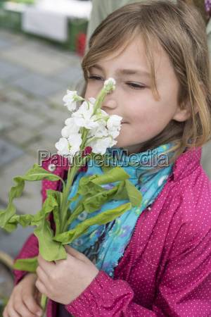 little girl sniffing at stock matthiola