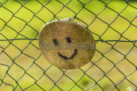 knitted smiley face fixed on wired