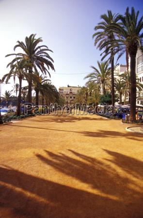 promenade with palmtrees in lloret de