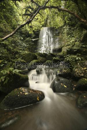 new zealand waterfall and mountain stream