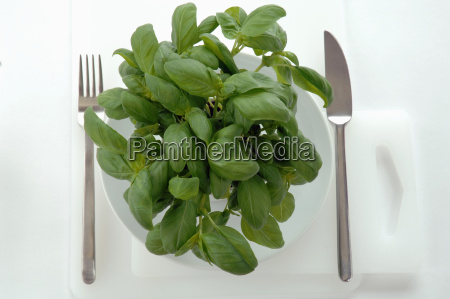 basil leaves on plate