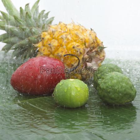 maturo freschezza frutta cadere esotico frutta