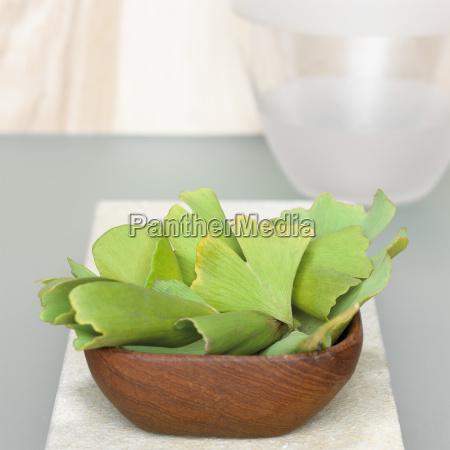 ginkgo leaves in wooden bowl ginkgo