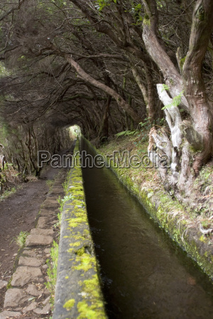 portugal madeira levada traditional canal irrigation