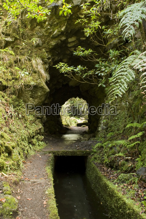 madeira portugal levada traditional canal irrigation