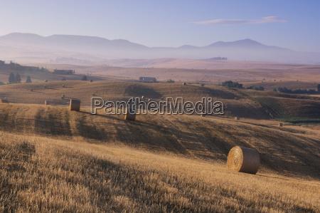 italy tuscany bales of straw on