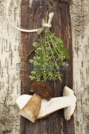 ceps and marjoram elevated view
