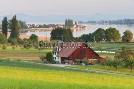 switzerland triboltingen view of farmstead and