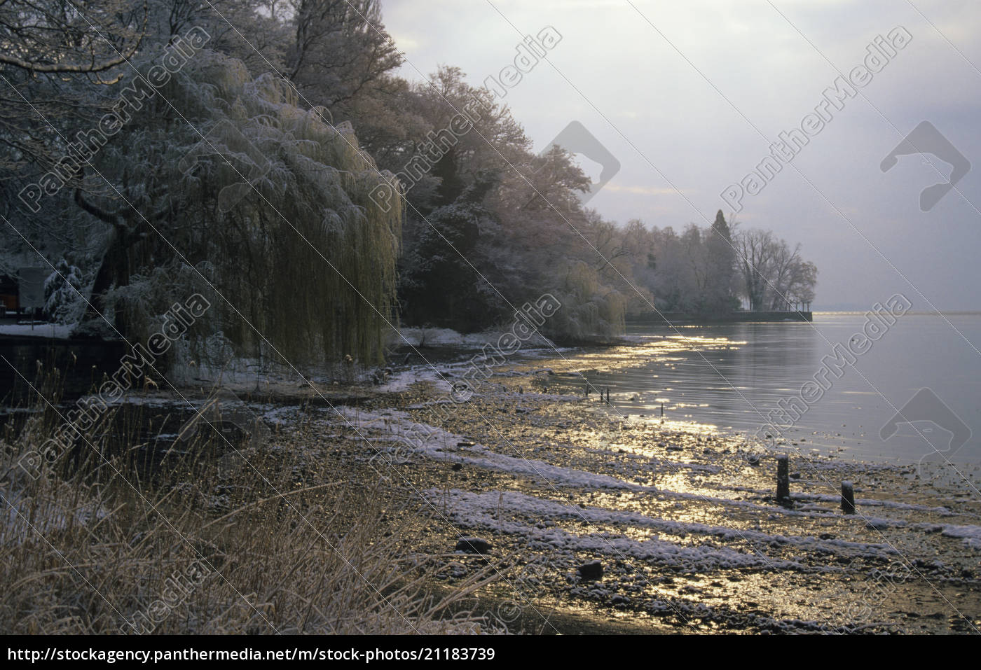 lake, constance, , germany - 21183739