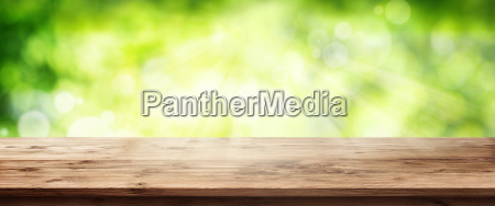 radiant green spring background with wooden