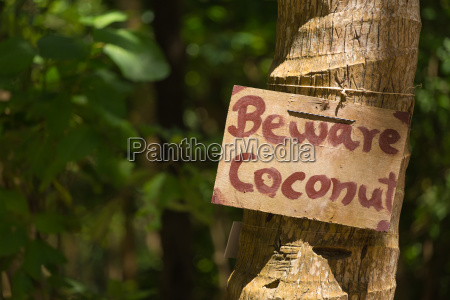announcement with beware coconut