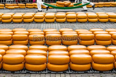 traditional dutch cheese market in alkmaar