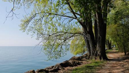 hiking trail on lake neuchatel