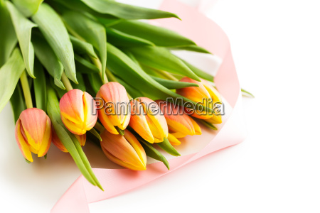 bunch of orange tulip flowers
