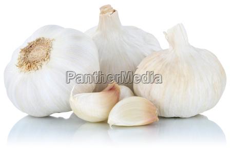 garlic cloves garlic healthy fresh exempted