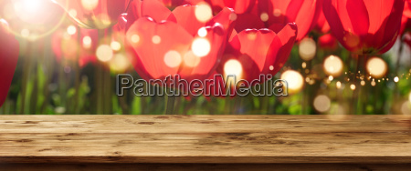 tulips in spring with wooden table