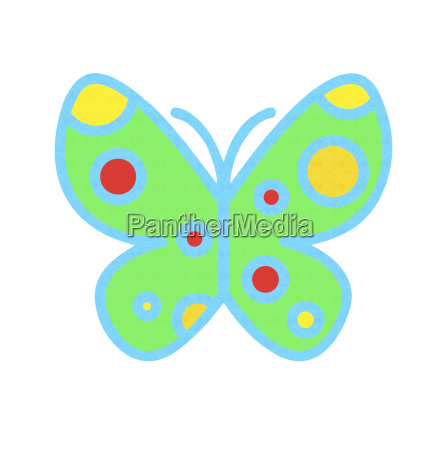 bright multi colored butterfly over white