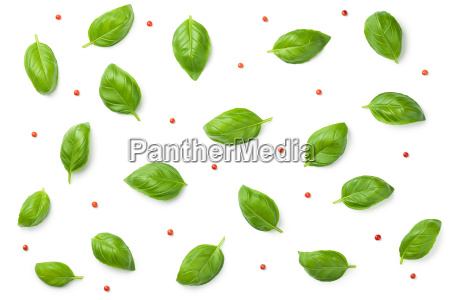basil leaves with red peppercorns isolated