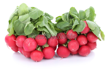 radish red vegetable isolated isolated