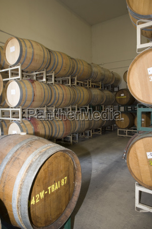 wine barrels in cellar of winery