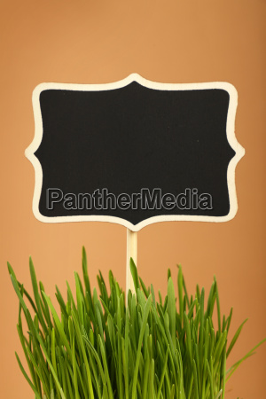 spring green grass and black sign