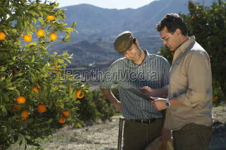 farmer and supervisor analyzing checklist in
