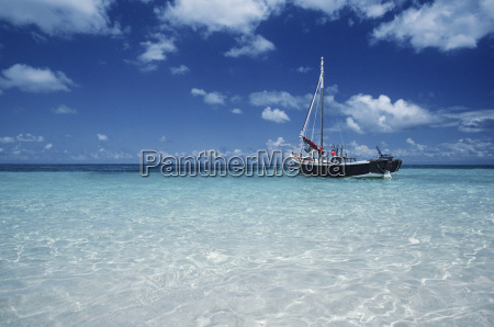 boat moored in shallow water far