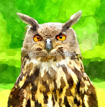eagle owl painting