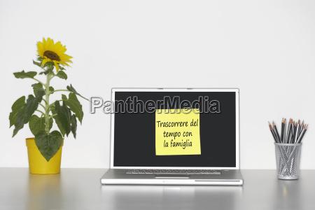 sunflower plant on desk and sticky