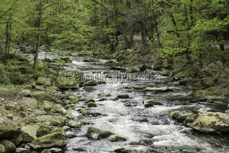 landscape in the bodetal in the