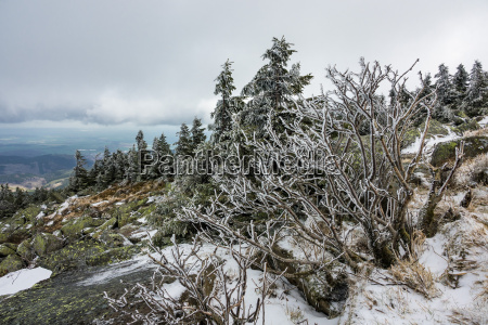 landscape with snow on the brocken