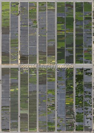 full frame shot of crop fields