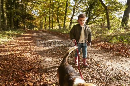 young boy walking dog in autumn