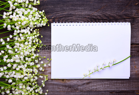 notebook with clean white sheets on