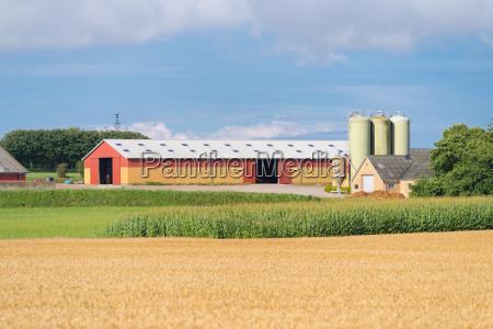 danish farm building