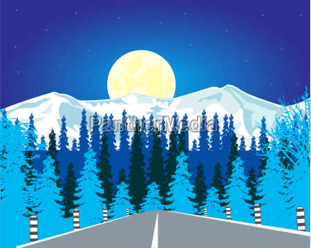 road in wood in winter