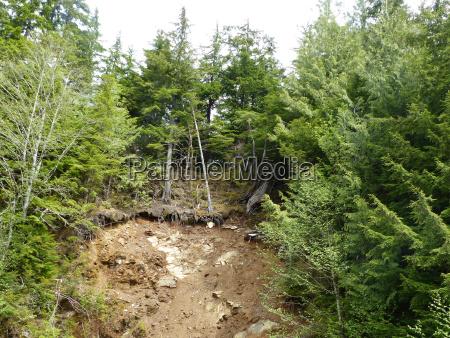 aftermath of a landslide