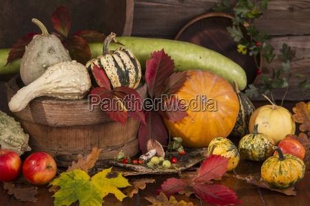 autumn still life with pumpkins gourds