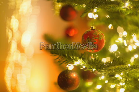red ornaments hanging from branch of