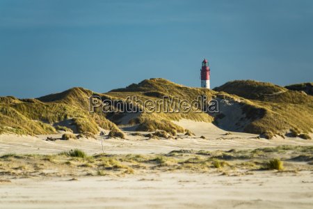 landscape in the dunes on the